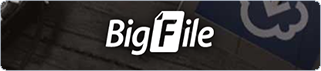 Buy BigFile.to Premium via Paypal, Visa/Master card
