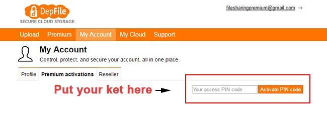 Activate Depfile Premium key